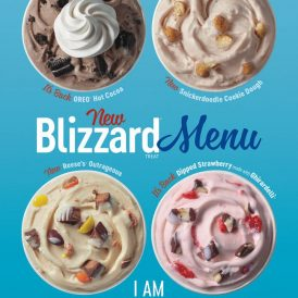 New Fall Blizzard Menu!